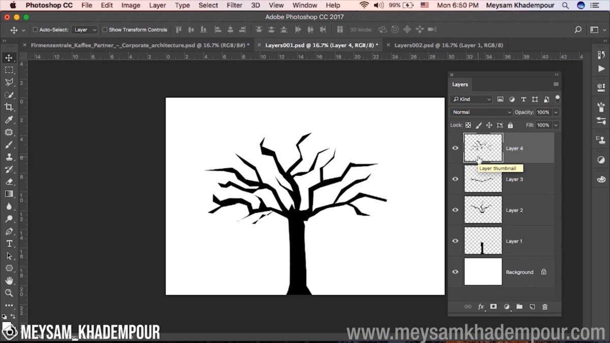 Elementary Photoshop Jpeg001