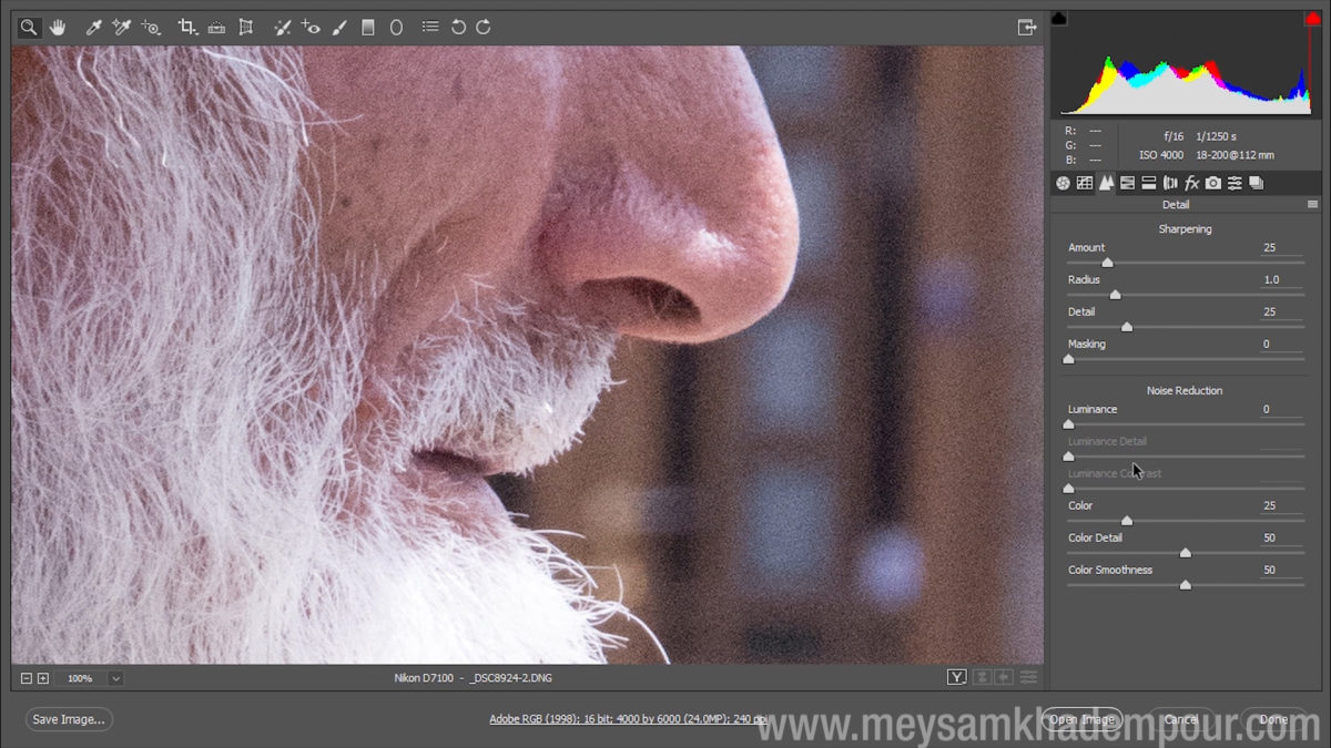 Camera Raw Preview004