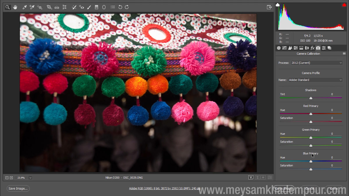 Camera Raw Preview009
