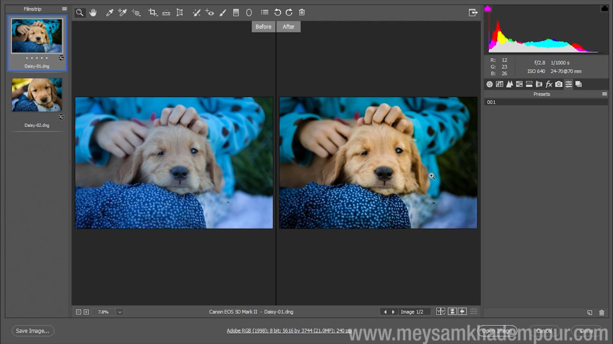 Camera Raw Preview010